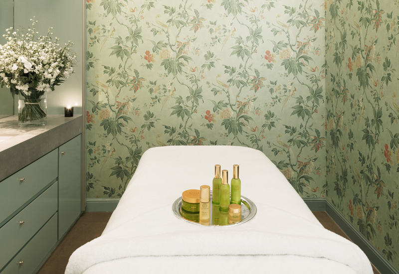 Le Bristol Paris Spa by Tata Harper